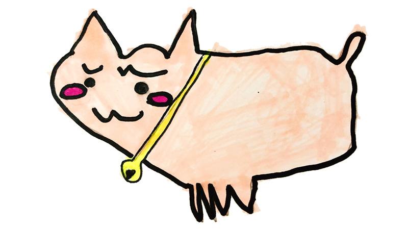 流星くん(9歳)の描いたさいわいにゃんのイメージ画像